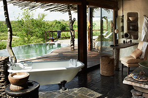 Amberlair Crowdsourced Crowdfunded Boutique Hotel Singita Boulders Lodge Bathtub 300x200